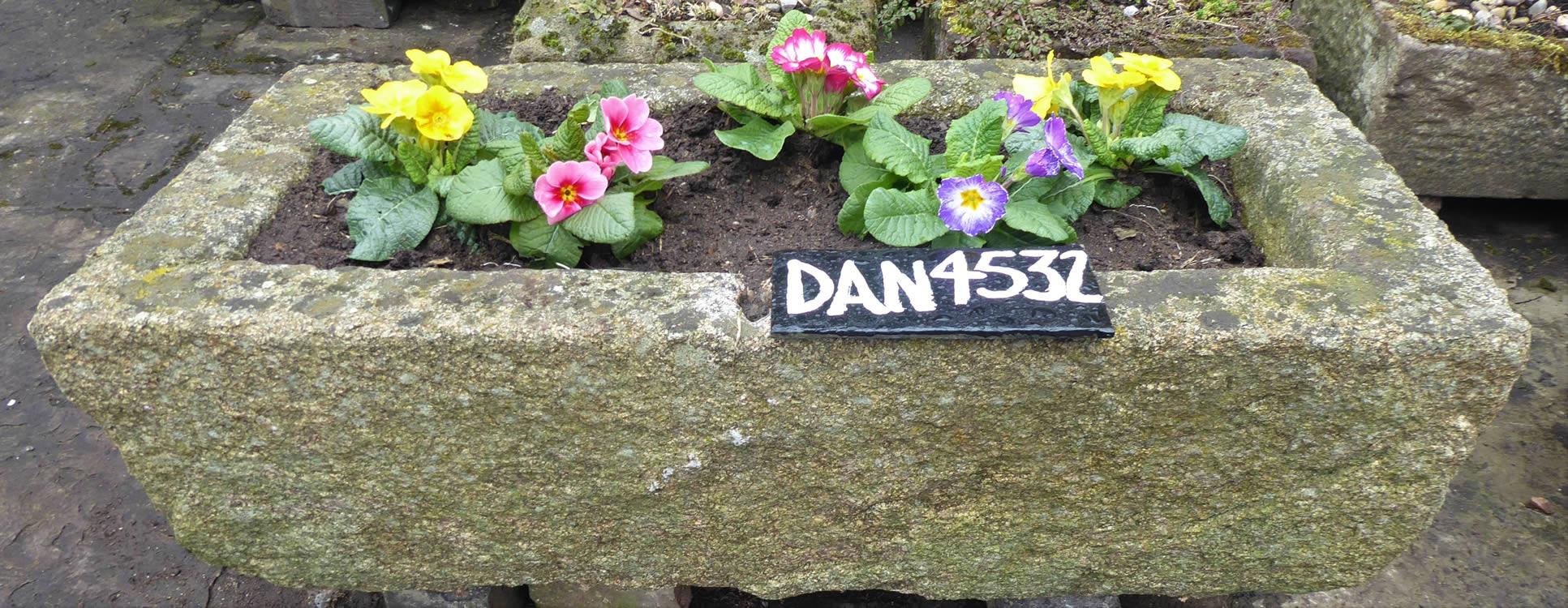 DAN 4532
