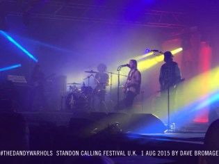 2015-0801-standon-full-live-purp.dave_bromage