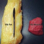 5 Pounds of Fat v. 5 Pounds of Muscle