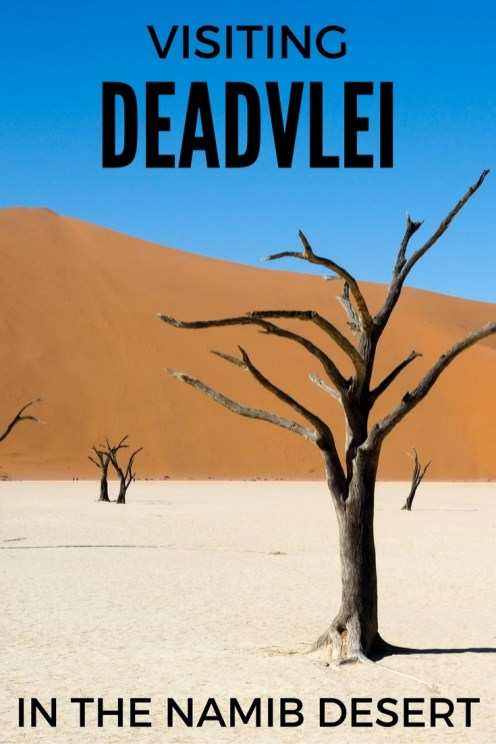 Visiting Deadvlei in Namibia