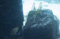 170119-cruise-daysix-nassau-063