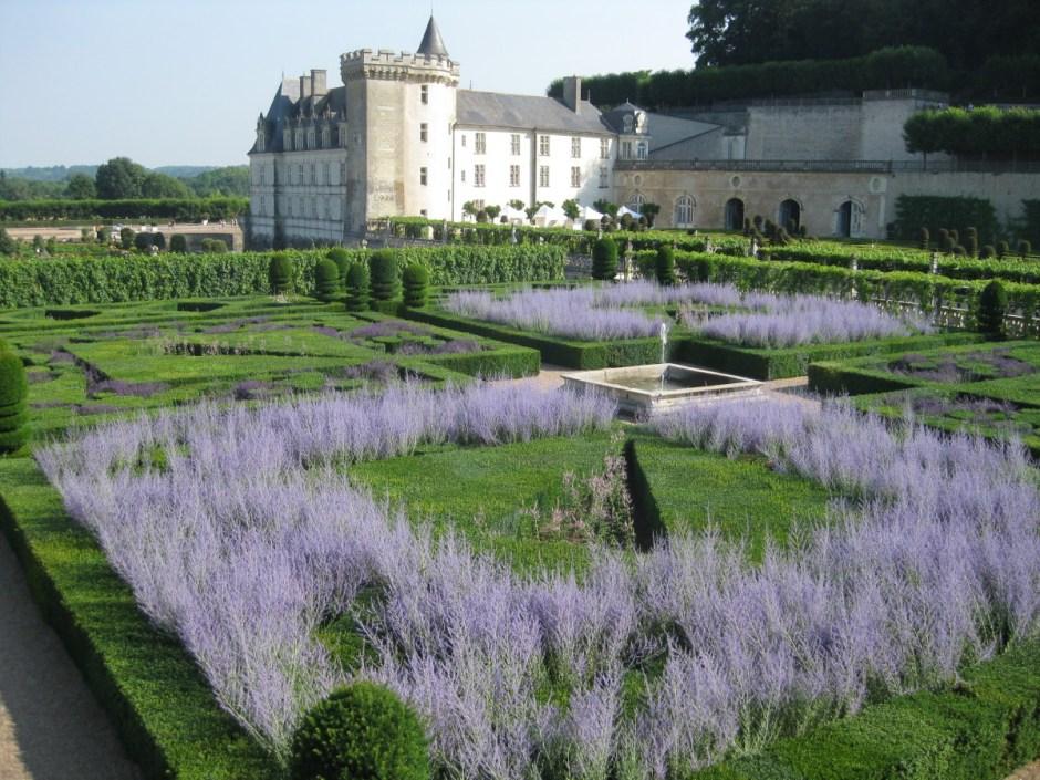 Chateau de Villandry Lavender