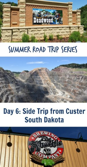 Side Trip Custer Pin