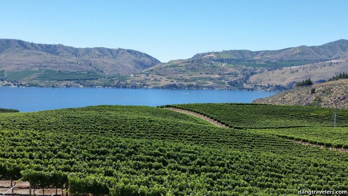 Benson Vineyards (2)