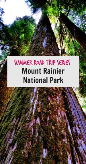Mt Rainier National Park Sunrise Pin