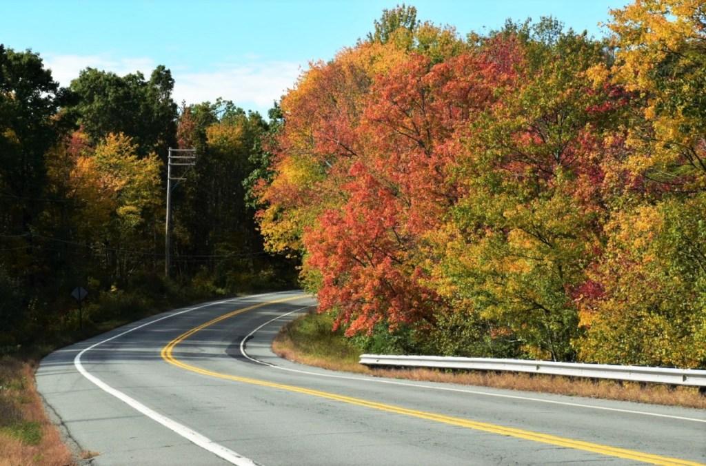Scenic Road in Pocono Mountains