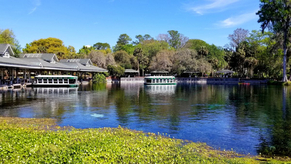 Silver Springs State Park: Wild Monkeys and Glass Bottom Boat Tours