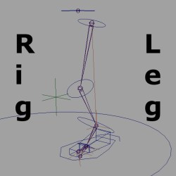 Rig a leg and foot