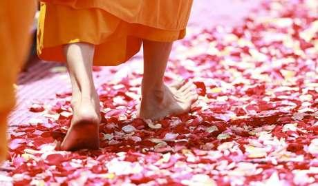 Camminata Zen