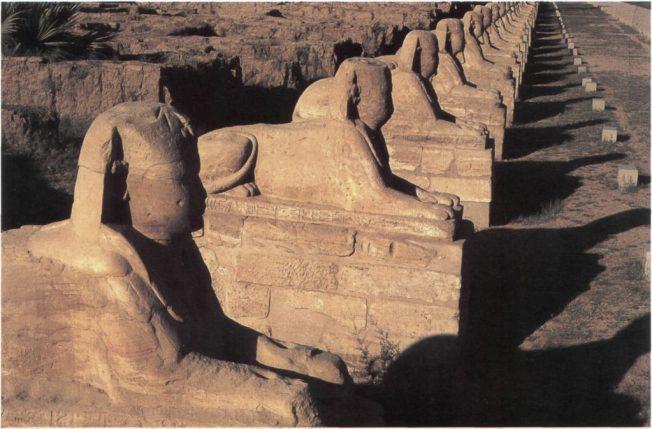 Luqsor il viale delle sfingi di Nectanebo terminale della via processionale che raccorda Luqsor a Karnak