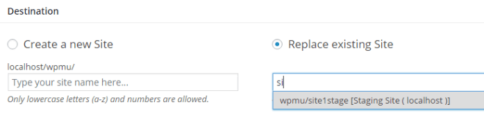 type in the url slug to identify the destination for the cloned site