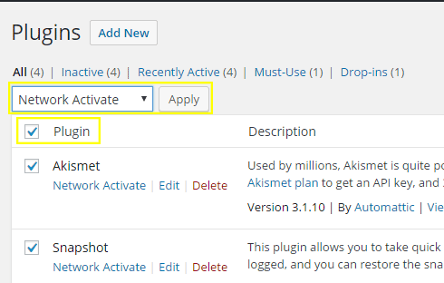 """The plugins page with the plugin checkbox clicked and """"Network Activate"""" selected."""