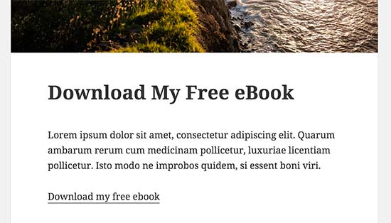 Ebook download link in a WordPress blog post