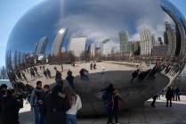 Chicago the Bean