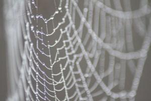 webben geweven