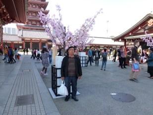 Berfoto di depan bunga Sakura