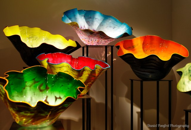 Dale Chihuly, Sculptural, Glass, Bowls 2019_15160