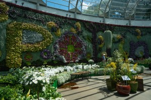 Pollination Exhibit at the Calyx at Royal Botanical Gardens in Sydney