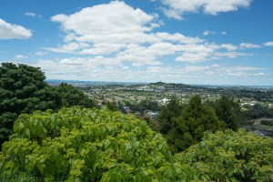 Another View from Mt. Eden in Auckland