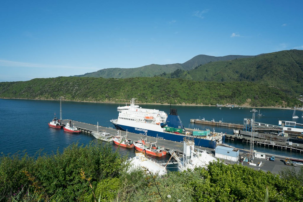 Picton Harbor at Cook Strait