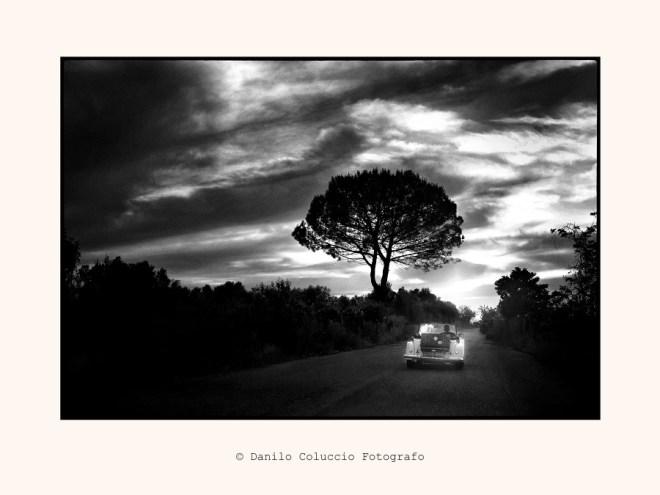 Danilo-Coluccio-0018