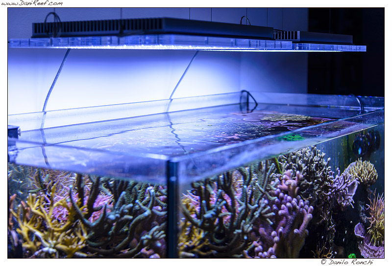 Plafoniere Led Per Nanoreef : Fluval sea marine nano led plafoniera per nanoreef da watt
