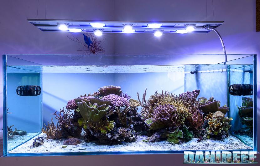 Fluval sea marine nano led plafoniera per nanoreef da watt
