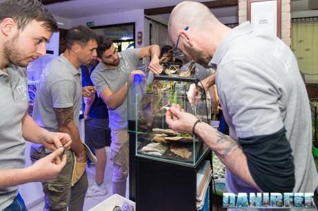 201704 acquario club, aquascaping, itau 32 Copyright by DaniReef