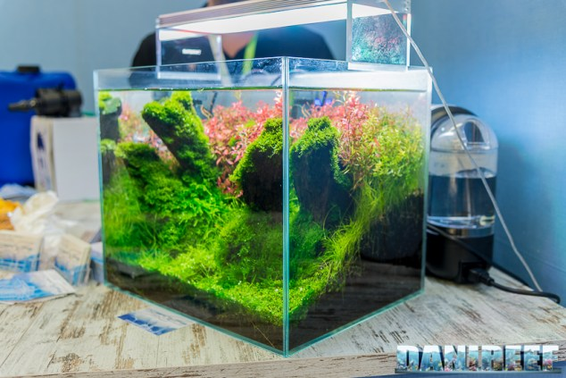 201805 acquario acqua dolce, aquascaping, interzoo, layout, oceanlife 05 Copyright by DaniReef