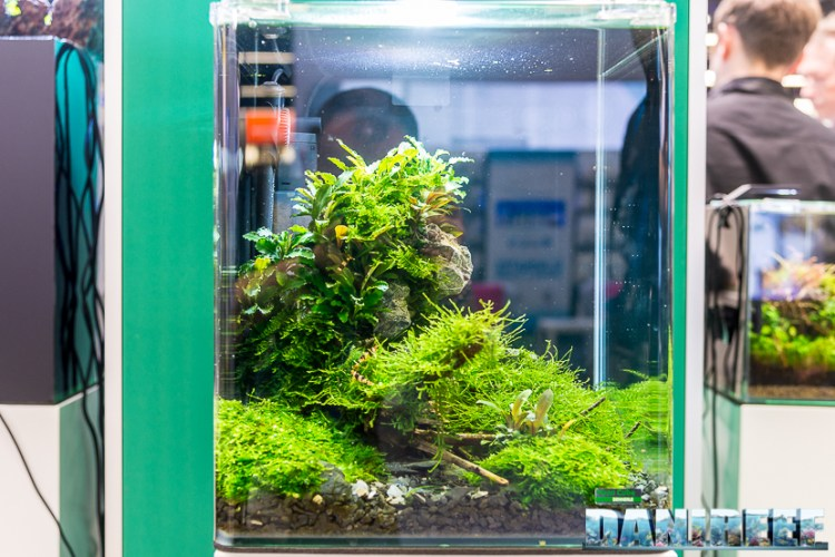 201805 aquascaping, dennerle, interzoo, layout 17 Copyright by DaniReef