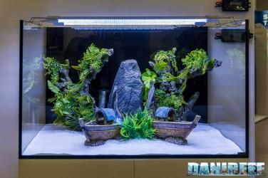 201805 aquatlantis, decorazioni, interzoo 05 Copyright by DaniReef