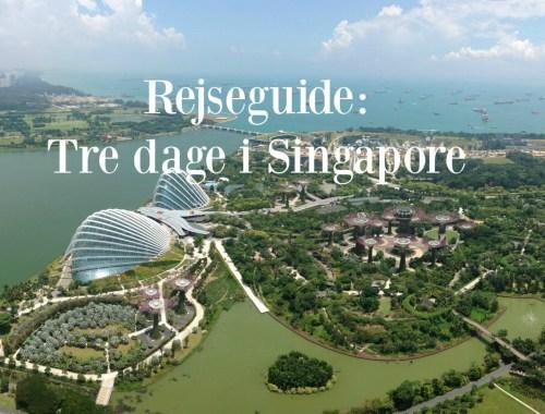 Rejseguide tre dage i Singapore