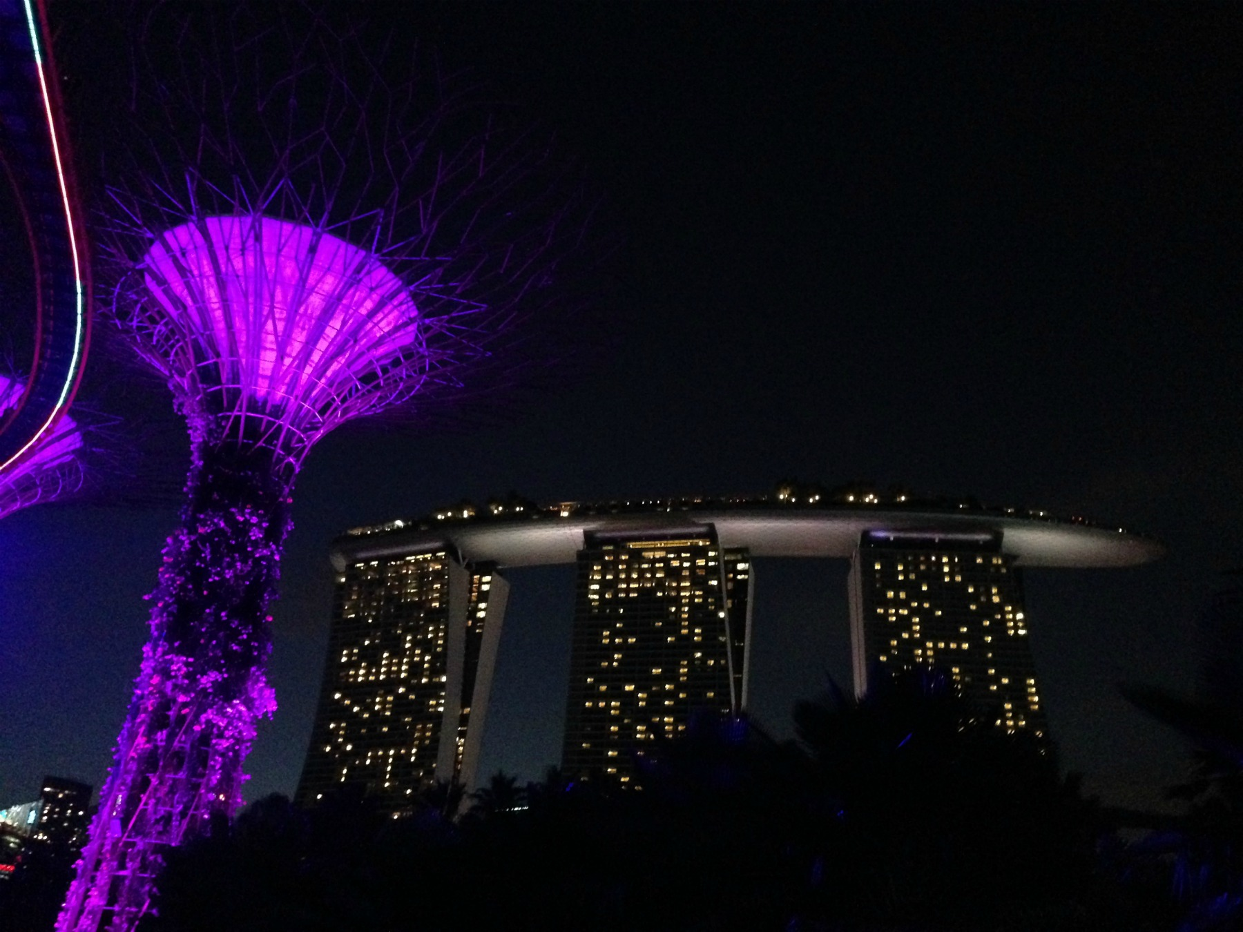 Supertree Grove and Hotel Marina By Sands