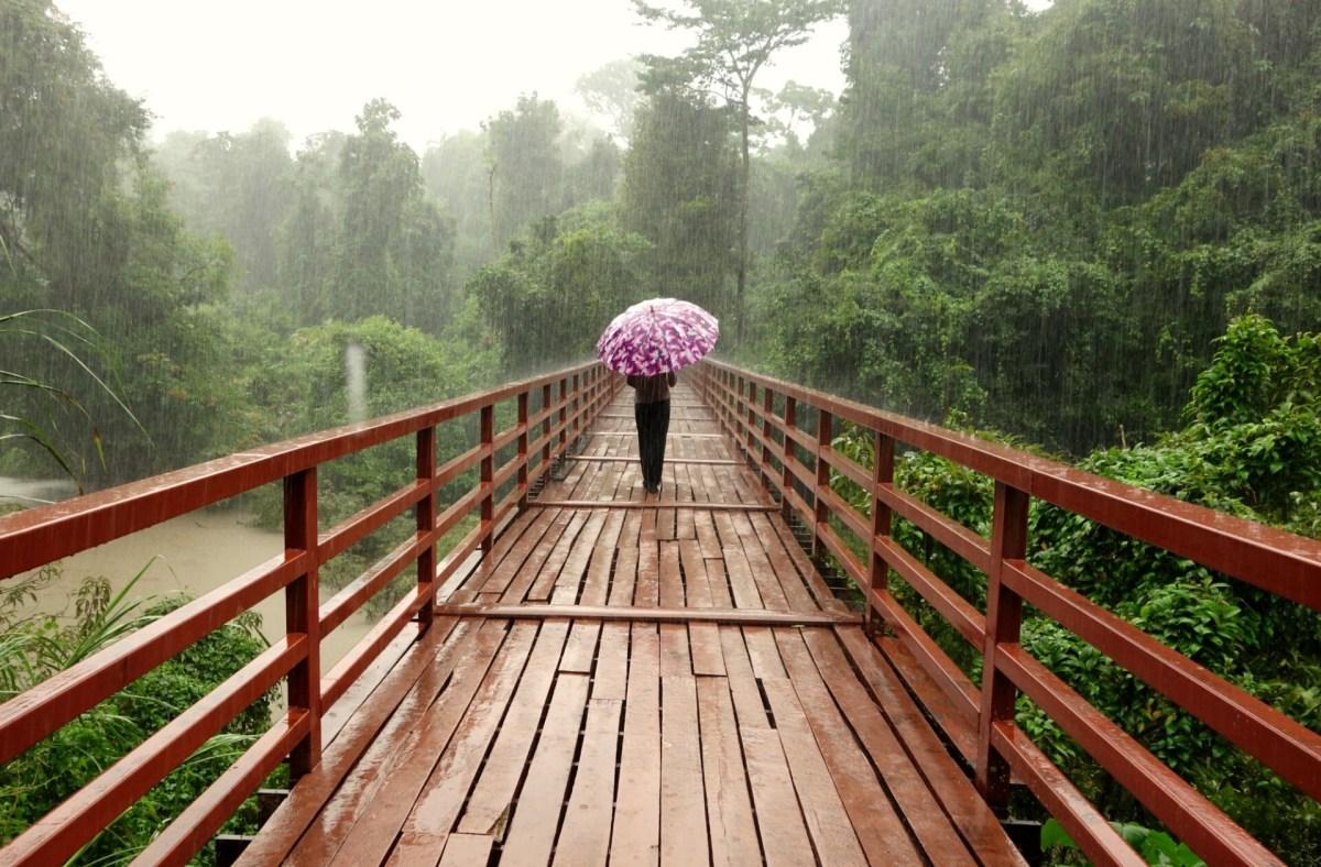 Hvornår er der regntid og monsun