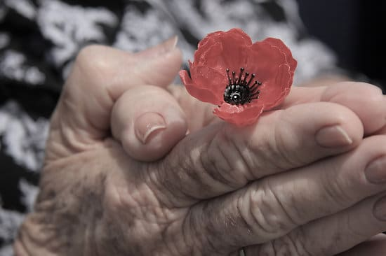 Of Gratitude and Recollection on Remembrance Day