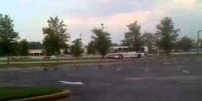 Geese Crossing 1