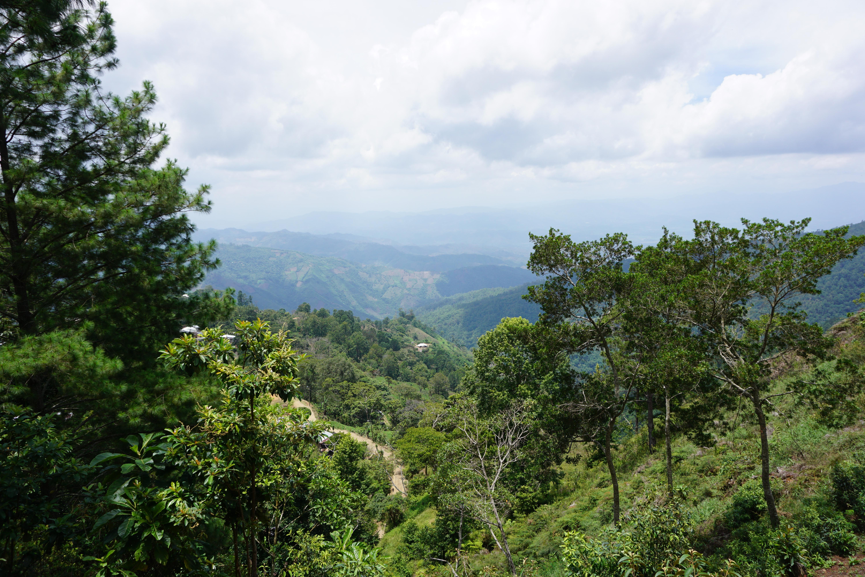 Parque Nacional Cusuco (Honduras)