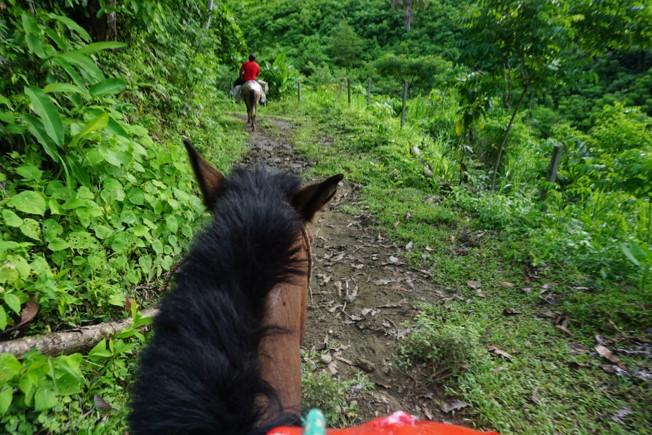 Cusuco National Park, Honduras