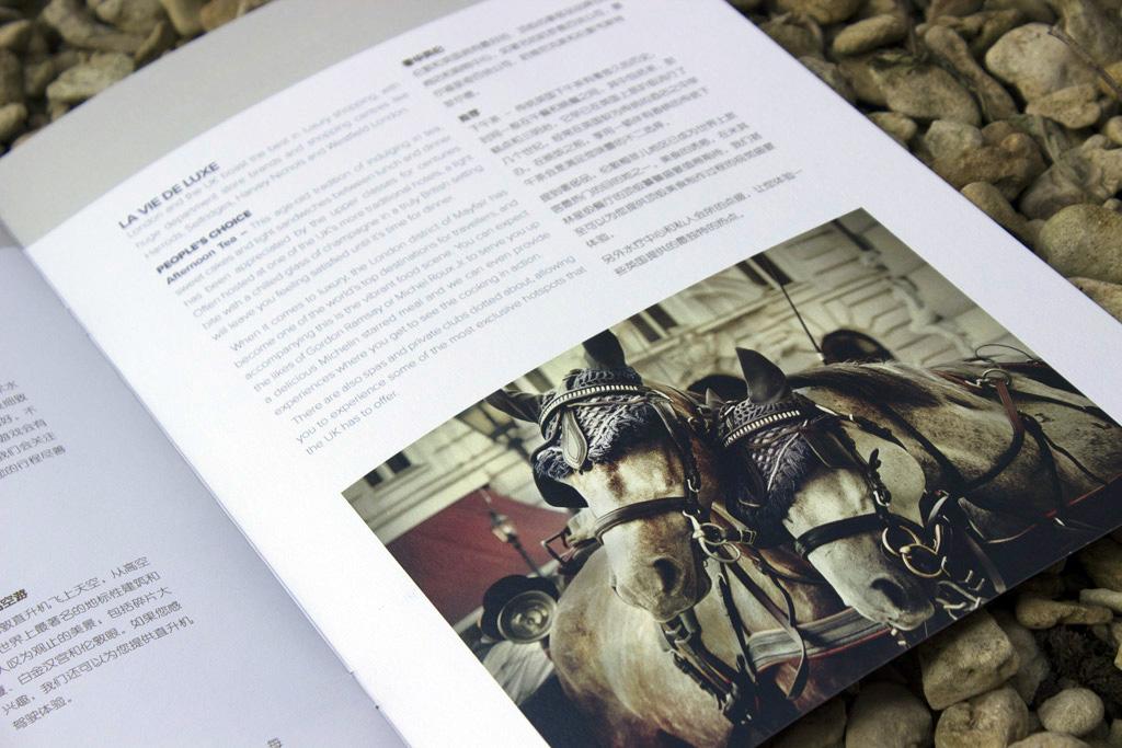 premium-brochure-design2