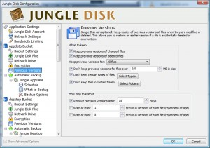 JungleDisk Previous Versions Settings