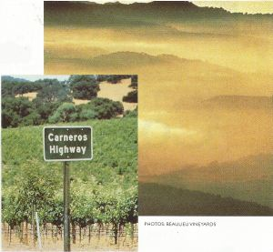 Carneros fog. Maritime influences here are stronger than in the rest of the region; Highway marker in front of Beaulieu Vineyards.