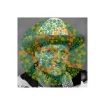 Gene Autry / Ishihara 33 (Unlettered), pigmented ink on glossy paper with UV laminate, 18 x 18 inches, 2013