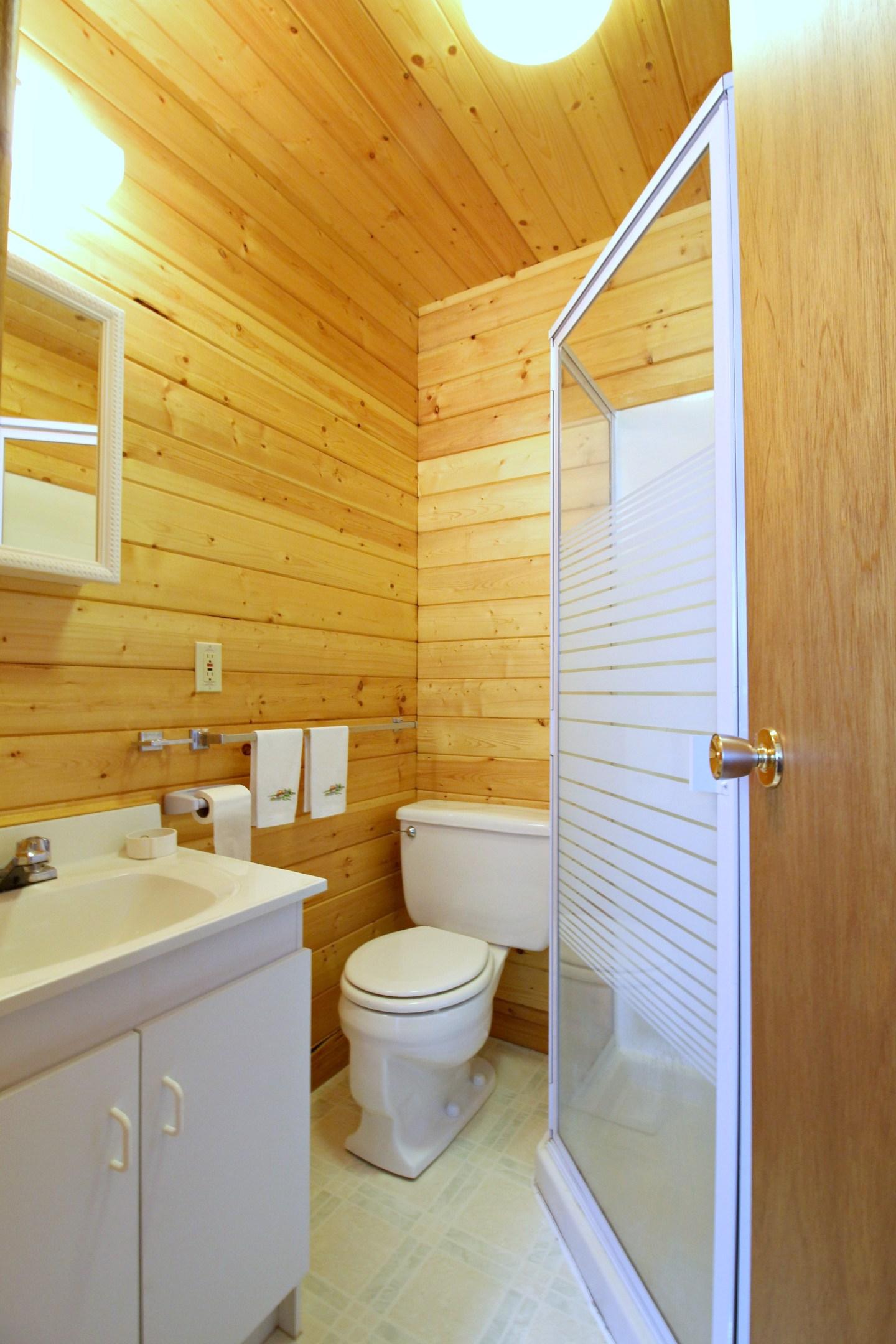 Bunkie Bathroom Before