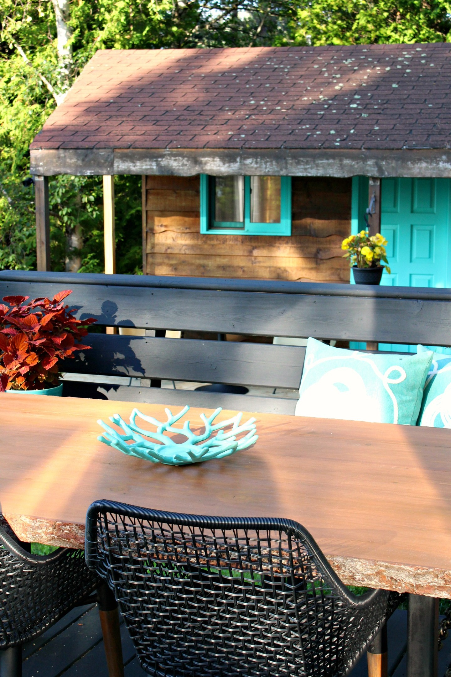 Behr Exterior Stain in Chesnut on Pine Live Edge Table