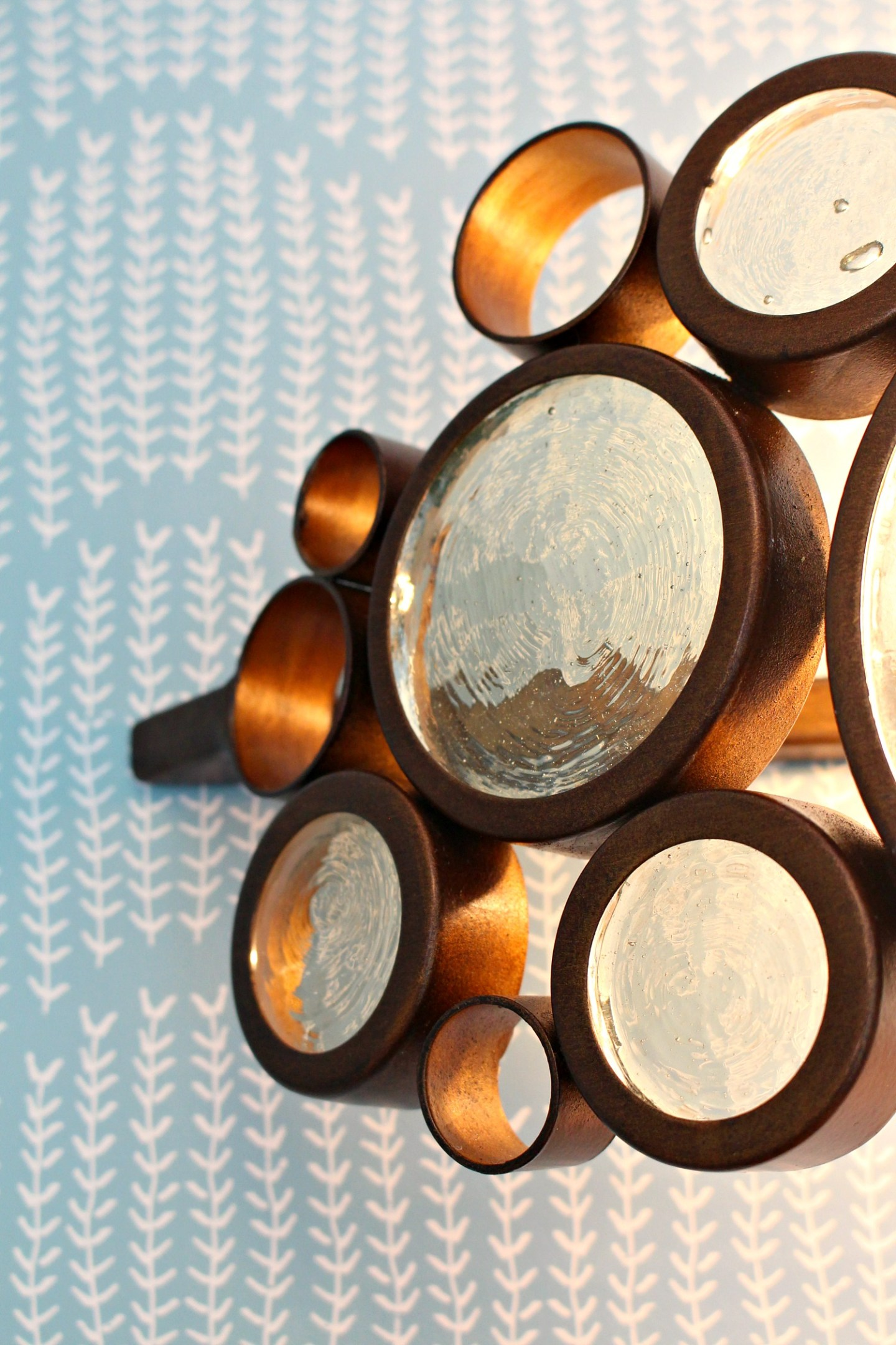 Varaluz Fascination Light Fixture