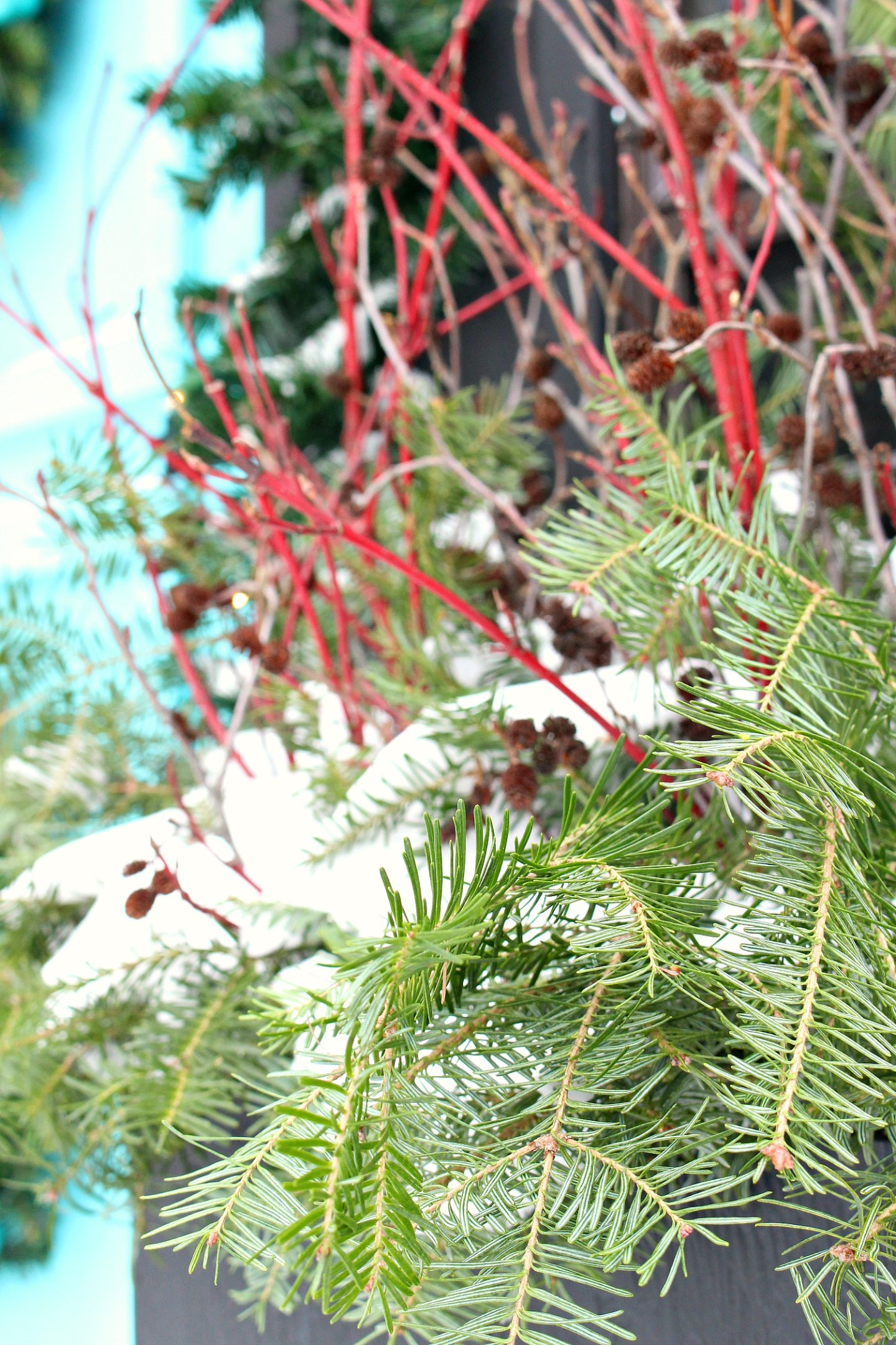 Decorating with Natural Dogwood