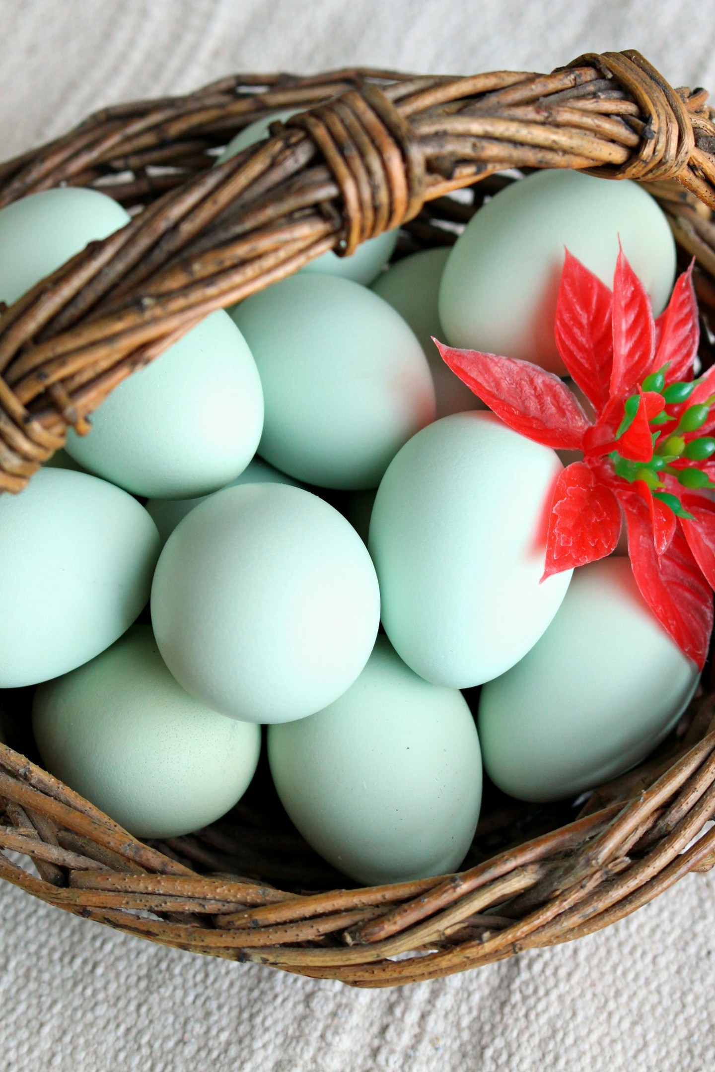 Basket of Turquoise Eggs at Christmas