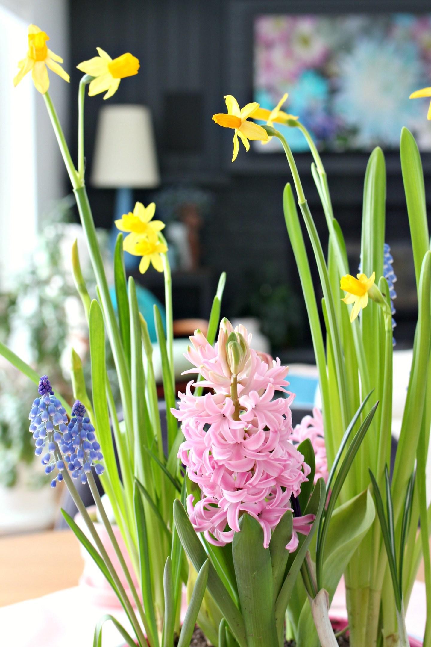 spring flowers centerpiece blooms