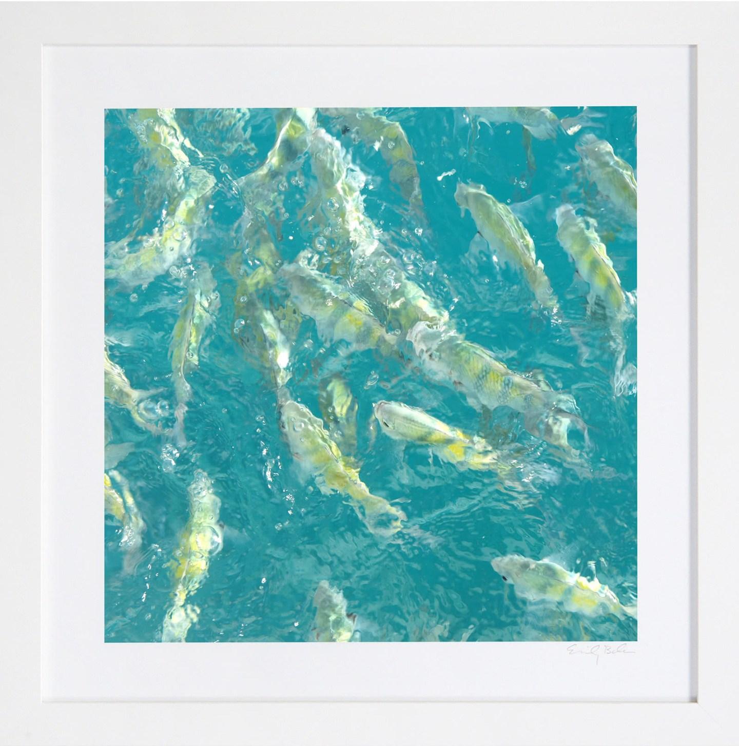 Turquoise fish art