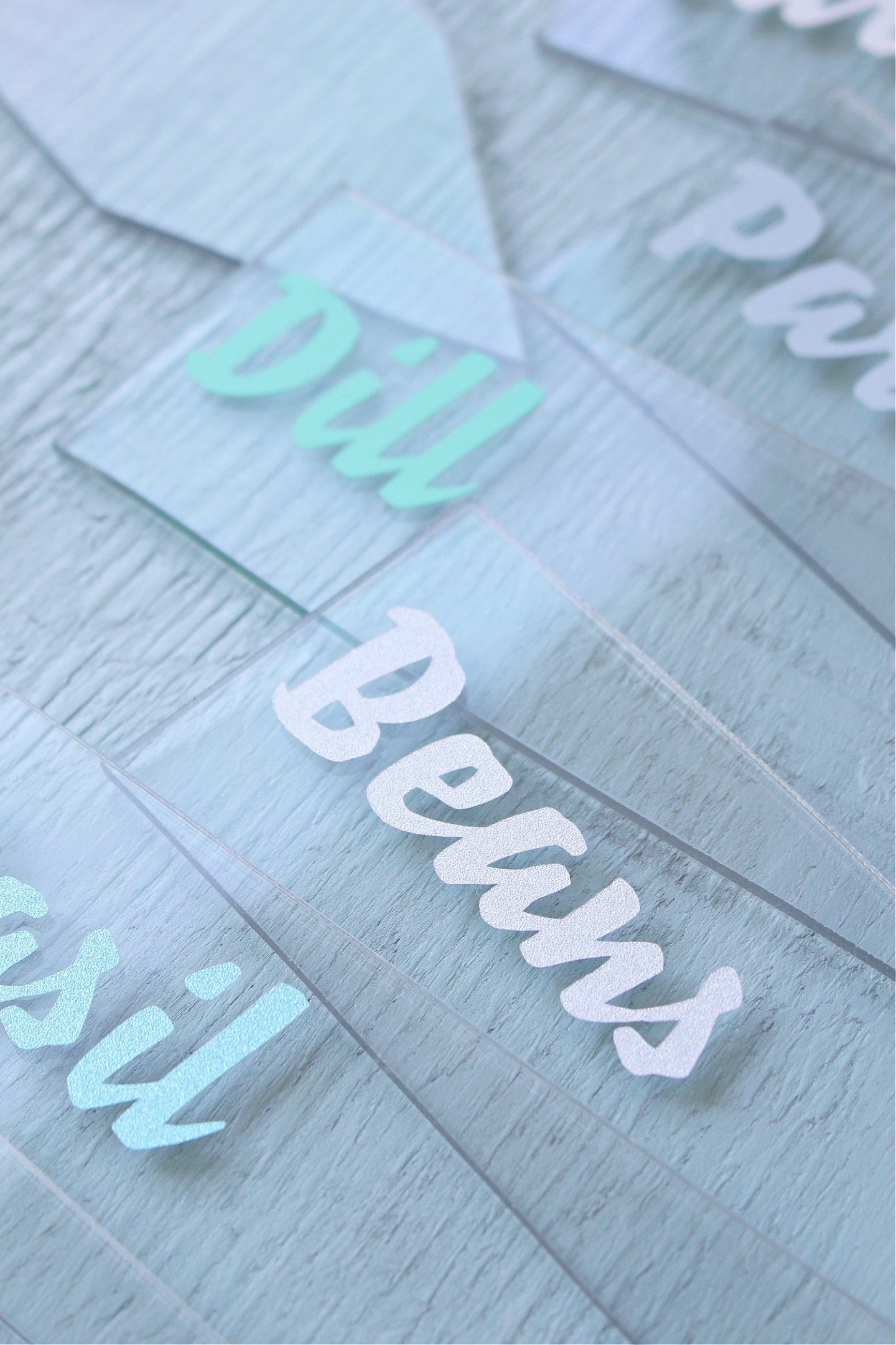DIY Acrylic Garden Markers